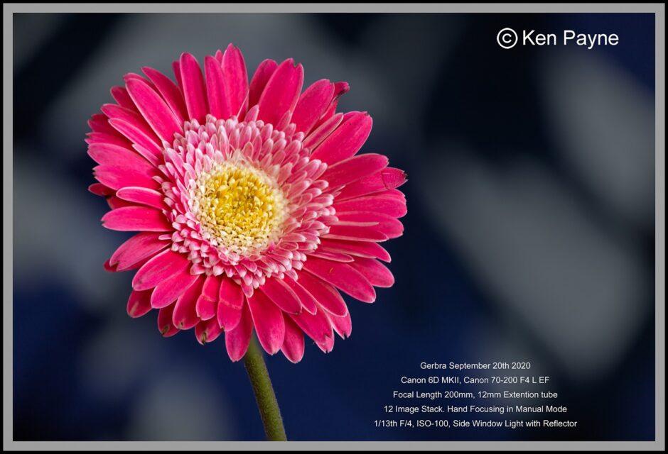 ken1-940x640.jpg
